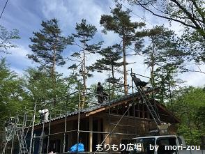 もりもり広場 もりぞう 別荘 木曽桧 軽井沢 建築中 4.jpg