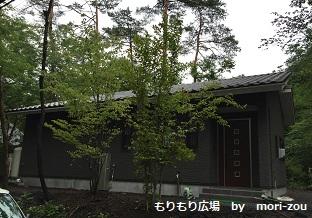 もりもり広場 もりぞう 別荘 別荘地 軽井沢 完成2.jpg