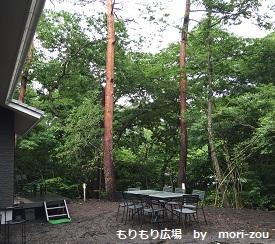 もりもり広場 もりぞう 別荘 別荘地 軽井沢 完成3.jpg