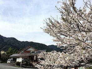 IMG_5896掲載用木曾ひのきの家もりぞうもりもり広場20170428ブログ.jpg