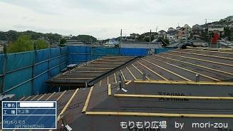 屋根 ルーフィング1もりもり広場掲載用.jpg