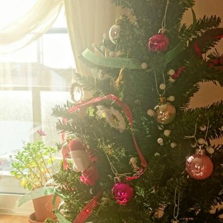 クリスマスツリーイメージ381d04e850b322531ba9da09be737c97_s.jpg