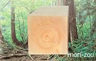 木曾ひのきの家もりぞうブログ無垢の木の家無垢柱.jpg