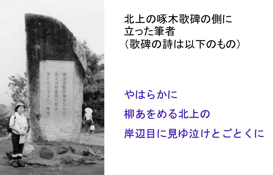 hatsukoi_no_hito_2.jpg