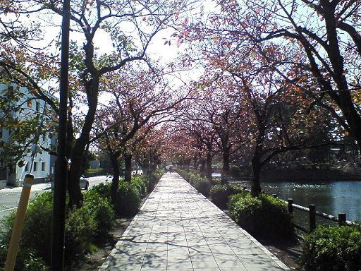 小田原は城下町 〜その1〜