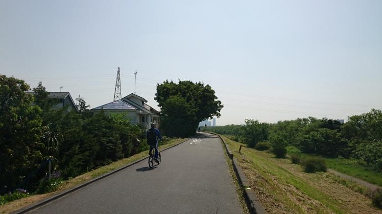 多摩川 ジョギング