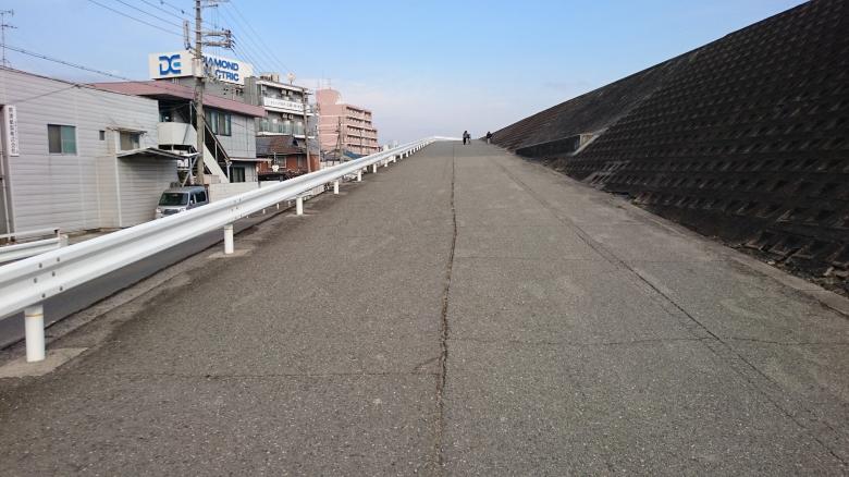 淀川 ジョギング