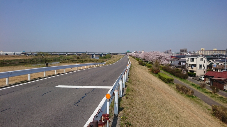 庄内川 ジョギング