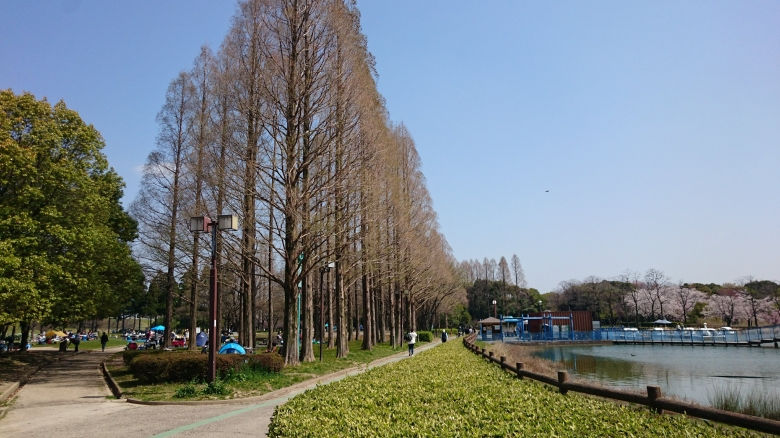 庄内緑地公園