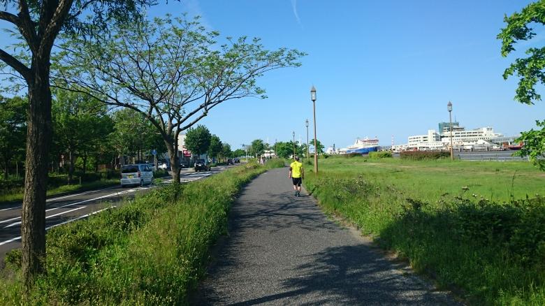 新潟島一周 ランニング