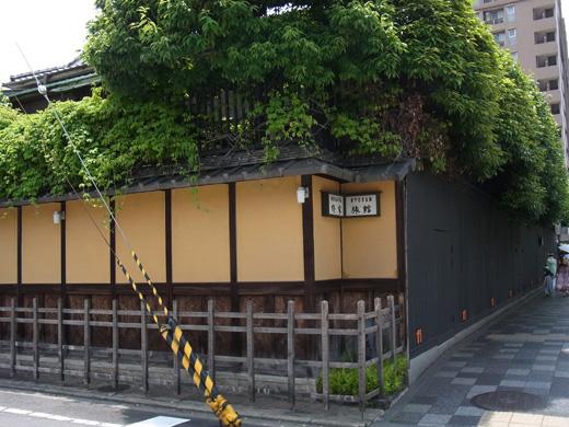 R0011010.JPG