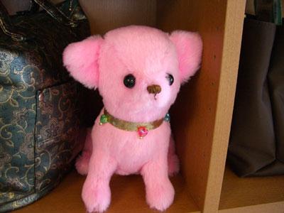 ピンクのチワワ