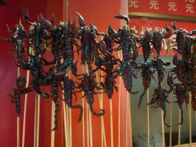 freaking scorpions