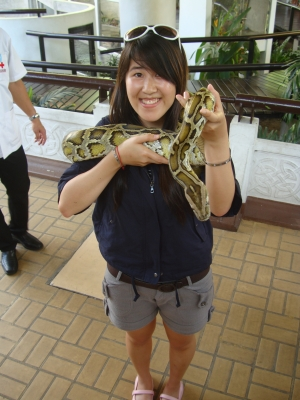 python..