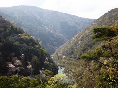 展望台から保津峡を望む
