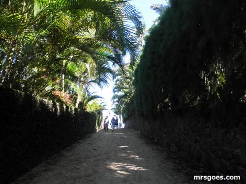 ラニカイビーチへの抜け道