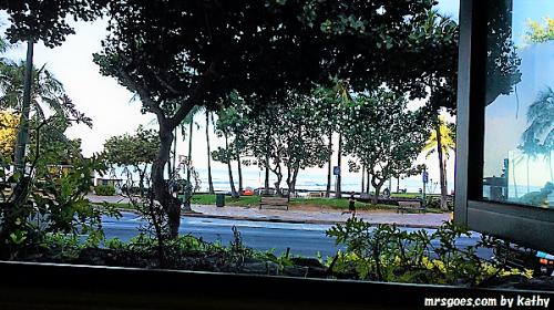 エッグスンシングスの窓から (2)