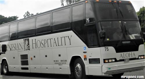 246 サンドバーツアーのバス