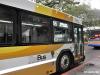 55番バス