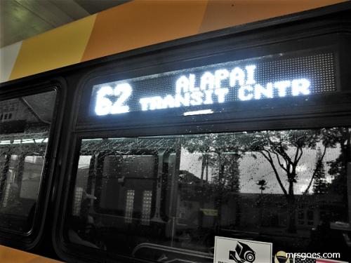 アラパイ トランジットセンター行きバス