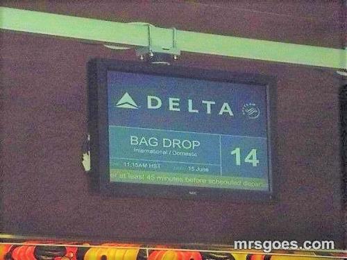 デルタ航空 手荷物預かり