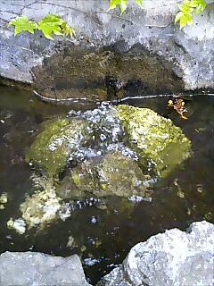 ルルドの泉