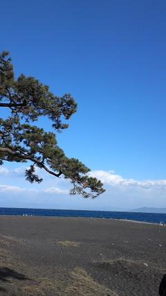 美保の松原