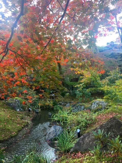 紅葉の嵐山☆