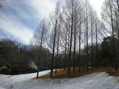 残雪.JPG