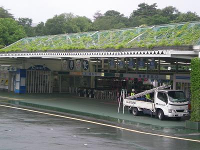 緑の屋根.JPG