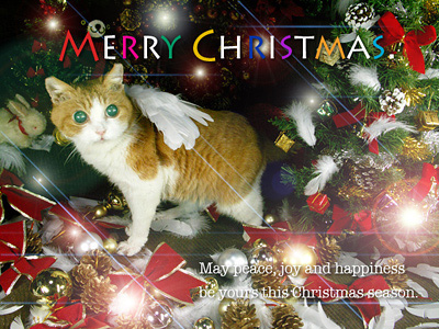クリスマス グリーティング・カード