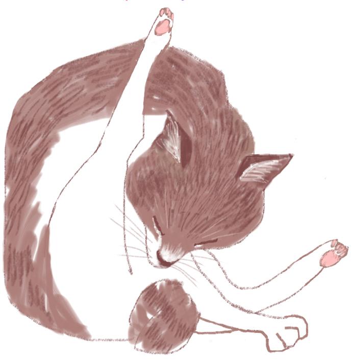 cat,ネコイラスト、mako