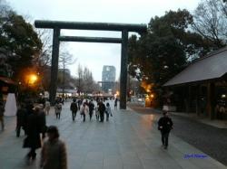 靖国神社夕暮れ時の桜9