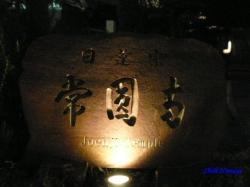 青梅街道沿常圓寺夜桜1