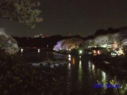 06_千鳥ヶ淵のお堀と映る桜