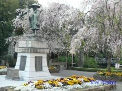 西新井大師弘法大師の像と桜