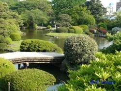 小石川植物園・日本庭園