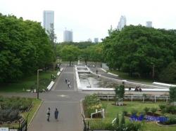 代々木公園のバラ1