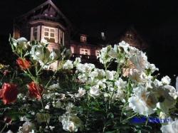 旧古河庭園バラと洋館のライトアップ7