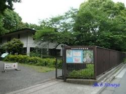 国立科学博物館付属自然教育園1