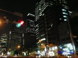 西新宿夜景その2_1
