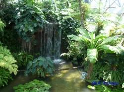 夢の島熱帯植物館10