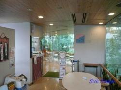 熱帯環境植物館8