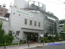 _渋谷区ふれあい植物センター1