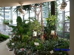 _渋谷区ふれあい植物センター2