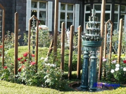 _秋のバラフェスティバルの旧古河庭園4