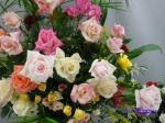 神代植物公園秋のバラ展を新宿駅西口広場で観賞_4