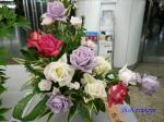 神代植物公園秋のバラ展を新宿駅西口広場で観賞その2_4