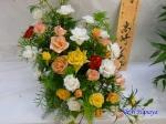 神代植物公園秋のバラ展を新宿駅西口広場で観賞その4_4