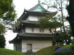 皇居東御苑10月の花と桜_9